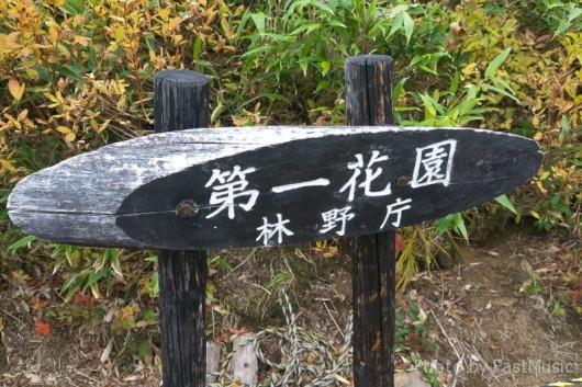 第一花園(銀泉台)
