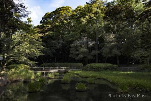 浄の池(出雲大社)