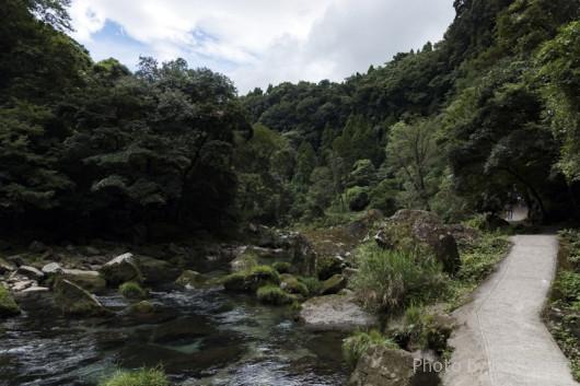 雄川の滝までの道中