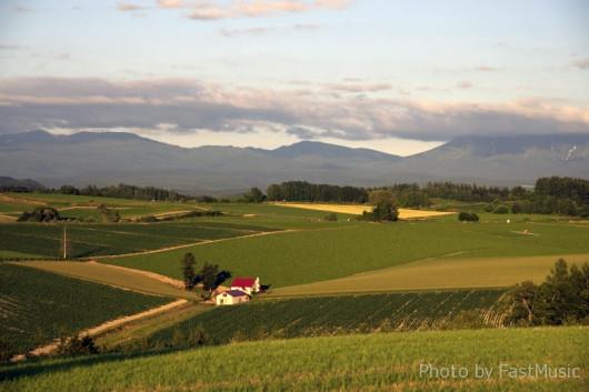 「新栄の丘」から望む「赤い屋根のある丘」