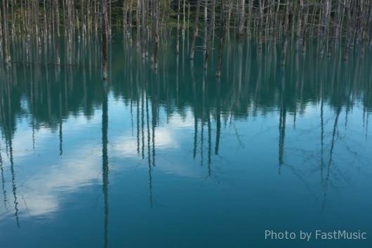 美瑛・青い池
