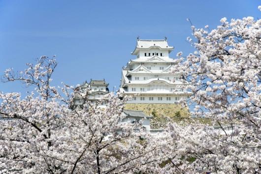 千姫ぼたん園から望む姫路城