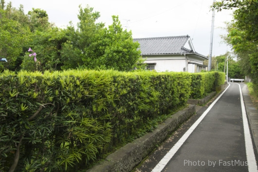 kagoshima-imaizumi7